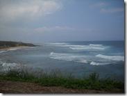 Maui_DB_Day320033